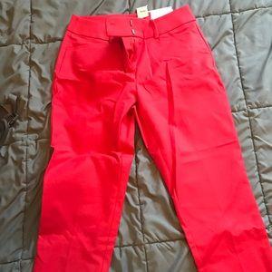 LOFT Riviera Pants - Julie Crop - Size 2P - NWT